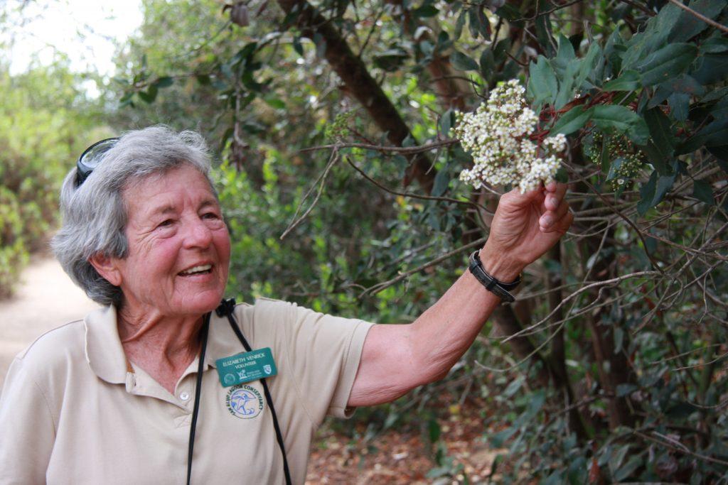 Elizabeth Venrick on a field trip. Photo by Fanglin Sun