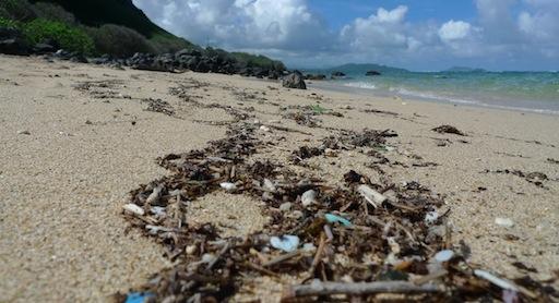 Plastik im Meer: Zahlen und Größen nach Meeresregion