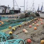 Am Hafen von Burgstaaken auf der Insel Fehmarn liegen die Fischernetze zum Trocknen aus. Foto: Anja Krieger