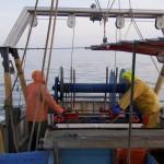 Die Fischer holen das Netz ein. Foto: Anja Krieger