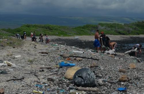 Plastik im Meer: Wissenschaftliche Studien